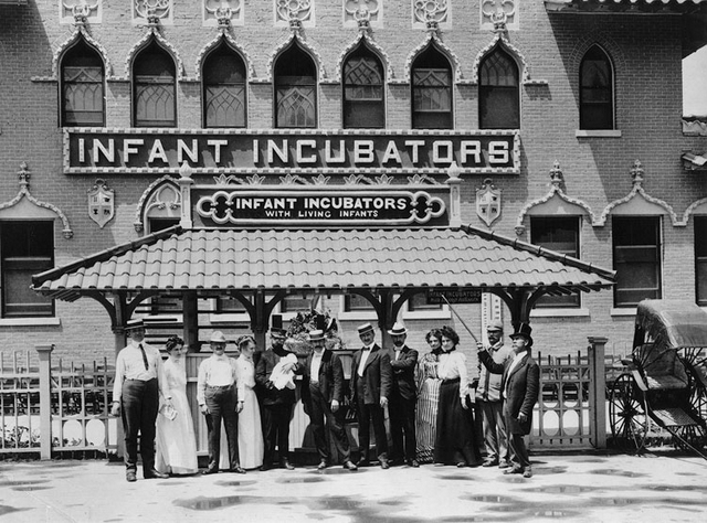The Incubator Babies of Coney Island